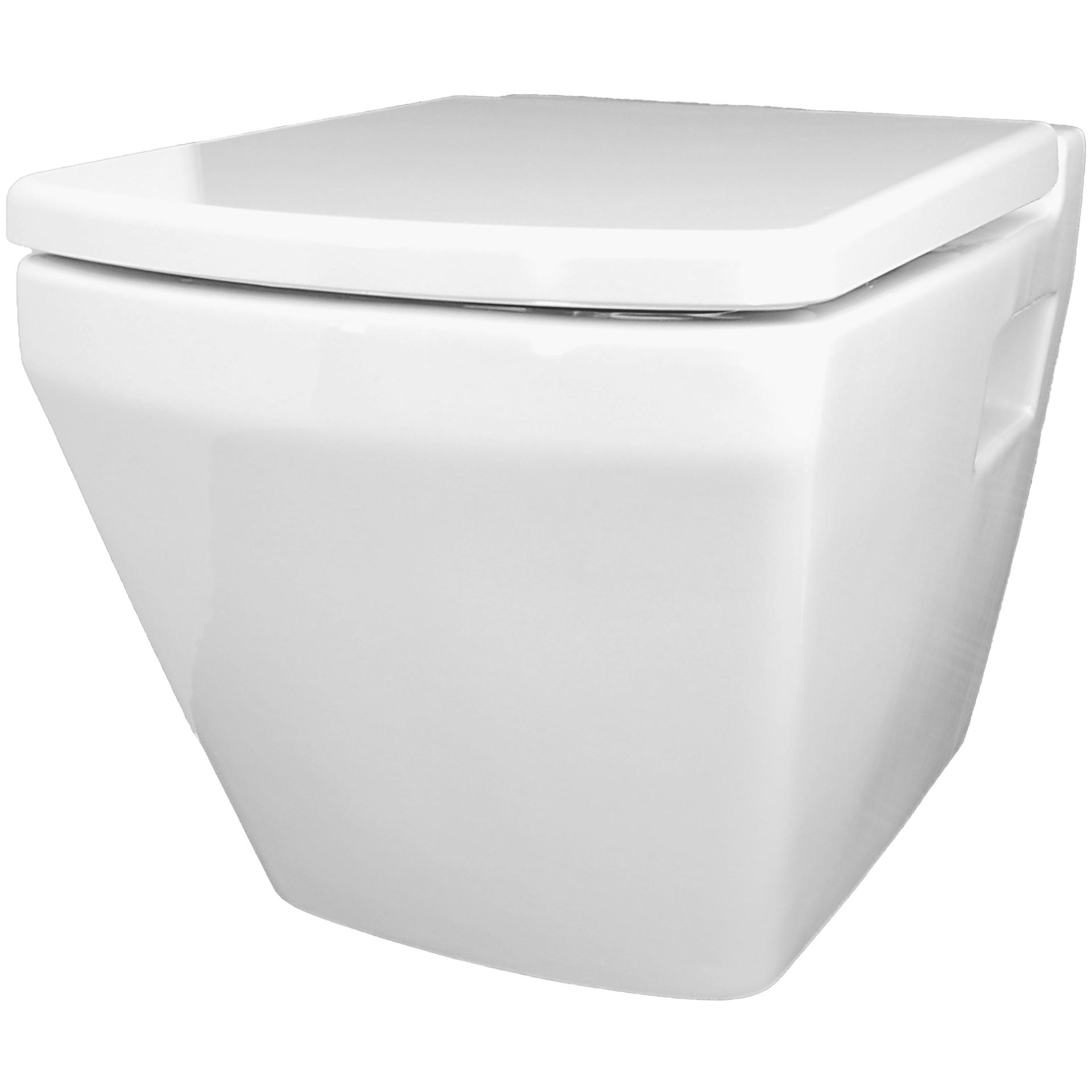 temtasi neptun oa 5201 dusch wc temtasi preiswerte dusch wcs ohne elektronik direkt vom. Black Bedroom Furniture Sets. Home Design Ideas